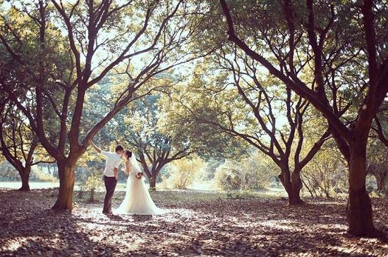 chụp ảnh cưới tại vườn nhãn vĩnh tuy